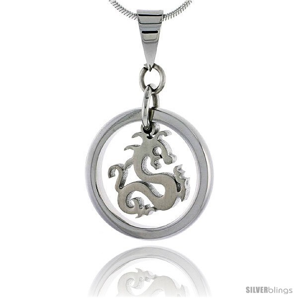 https://www.silverblings.com/2565-thickbox_default/stainless-steel-dragon-pendant-3-4-in-tall-w-30-in-chain.jpg