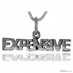 Sterling Silver Expensive Talking Pendant, 1 in wide -Style Pa922